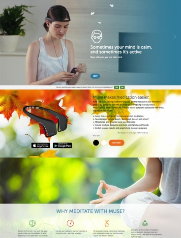 eCommerce website: Muse