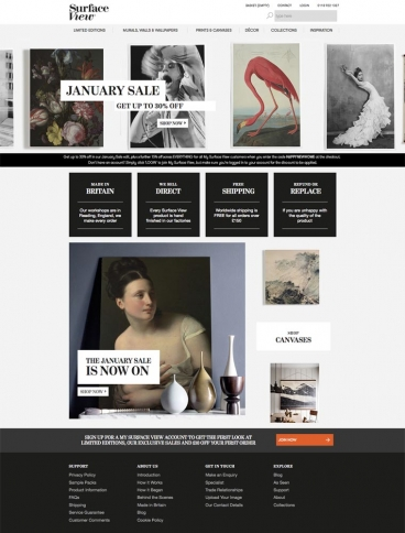 eCommerce website: Surface View