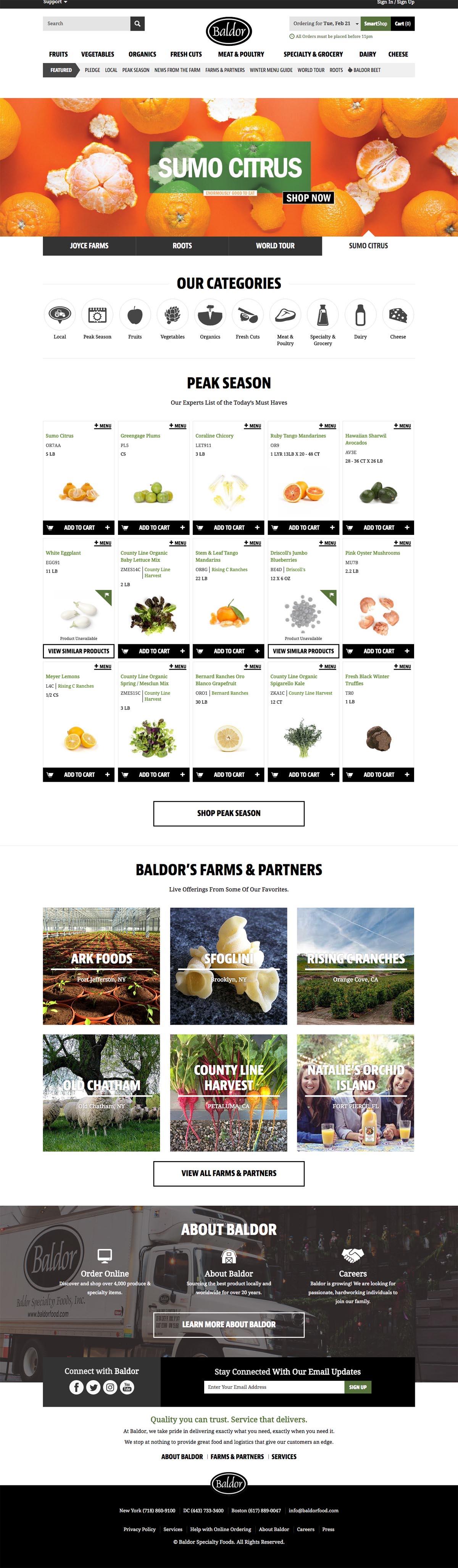 eCommerce website: Baldor