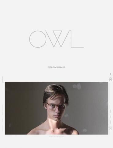 eCommerce website: OWL