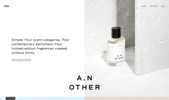 eCommerce website: A. N. Other