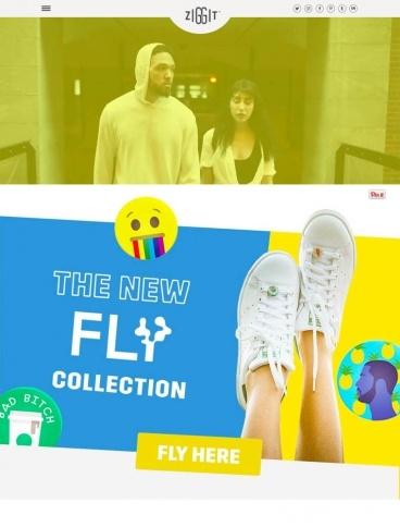 eCommerce website: Ziggit Style