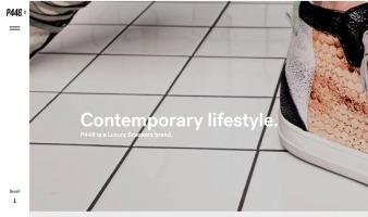 eCommerce website: P448