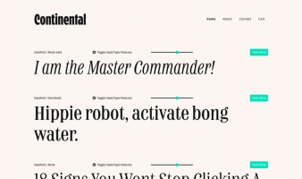 eCommerce website: Continental Type Co.
