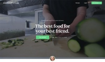 eCommerce website: JustFoodForDogsClub