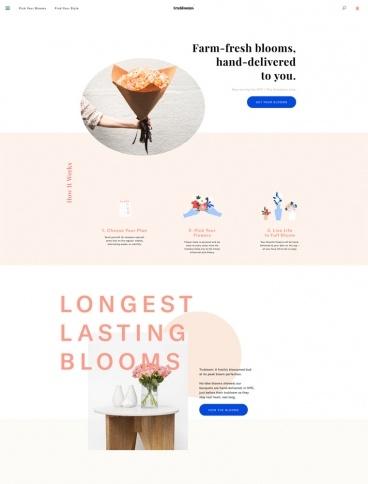 eCommerce website: Trublooms