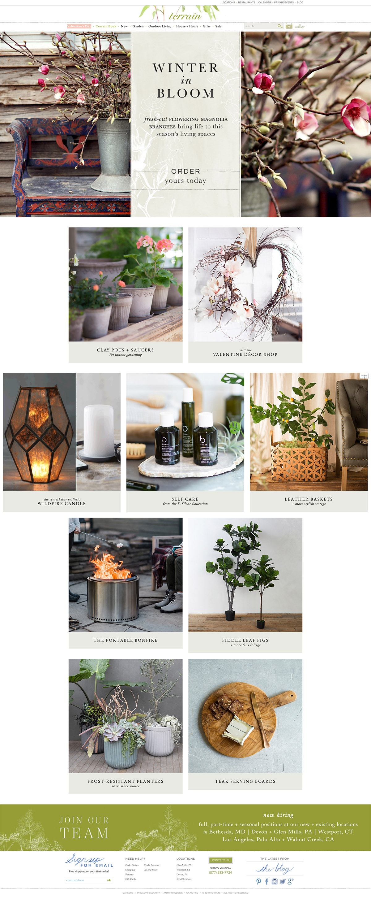 eCommerce website: Terrain