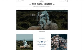 eCommerce website: The Cool Hunter