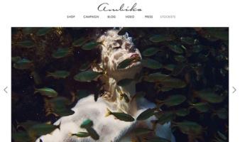 eCommerce website: Ambika Conroy