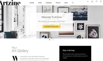 eCommerce website: Artzine