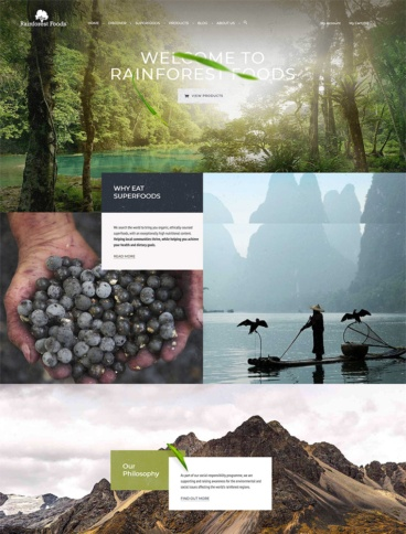 eCommerce website: Rainforest Foods