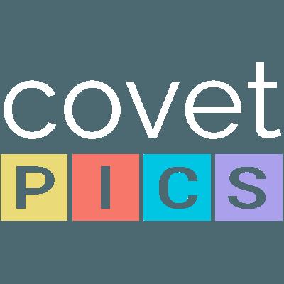Covet.pics logo