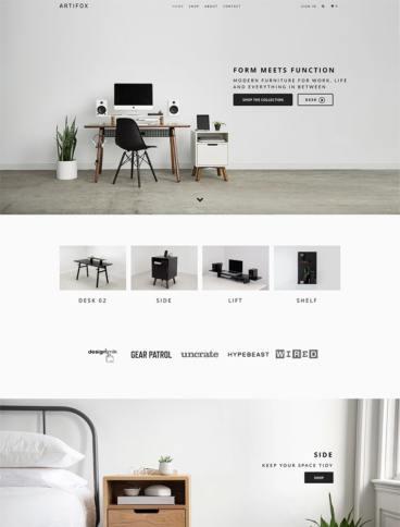 eCommerce website: ARTIFOX