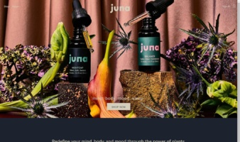 eCommerce website: Juna