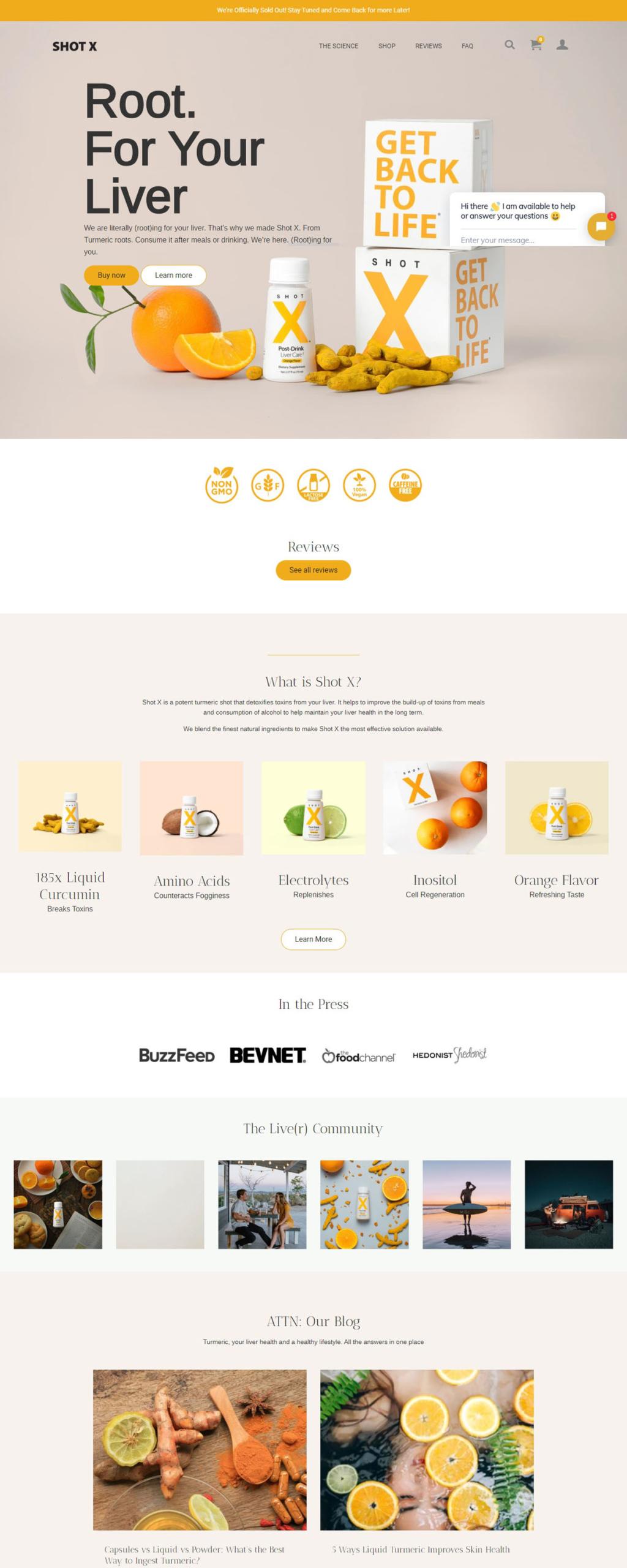 eCommerce website: SHOT X