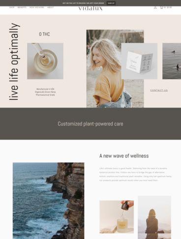 eCommerce website: Vidalux