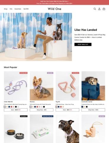 eCommerce website: Wild One