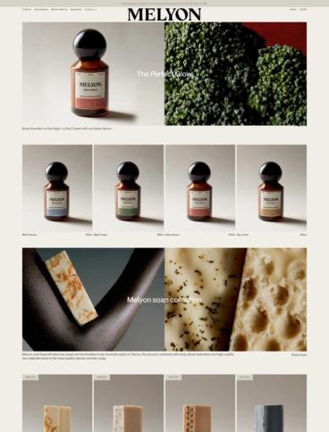 eCommerce website: Melyon