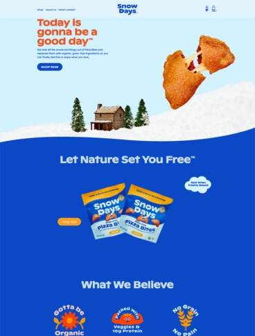 eCommerce website: Snow Days