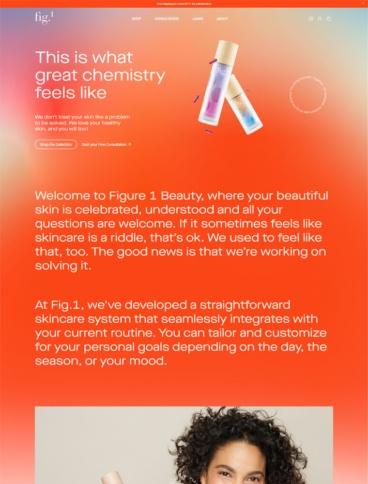 eCommerce website: Figure 1 Beauty