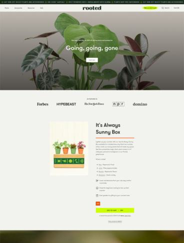 eCommerce website: Rooted