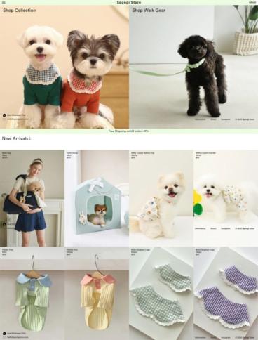 eCommerce website: Spongi Store