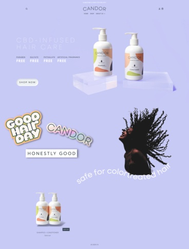 eCommerce website: Candor