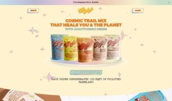eCommerce website: Toodaloo