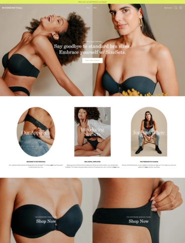eCommerce website: Wherewithal