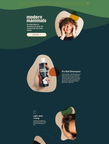 eCommerce website: Modern Mammals